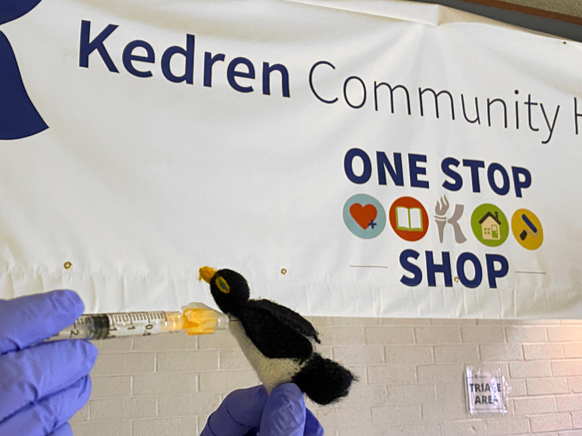 Since Yvonne does not like posing for the camera, she and her husband take Pengui the penguin all around the world with them. Here, Pengui receives his vaccine at Kedren Community Health Center.